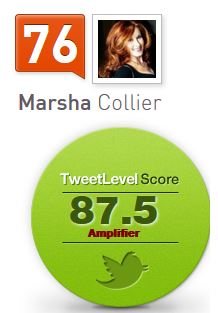 TweetLevel Scores